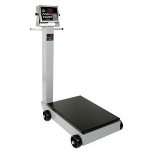 Portable Digital Receiving Scale with 205 Indicator - 1000 lb. x .5 lb.