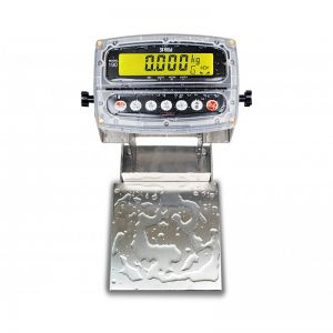 Admiral Bench Scale with 8 x 8 Platform - 30 lb. Capacity