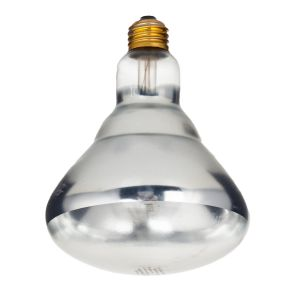 Clear Coated Heat Lamp Replacement Bulb