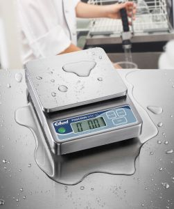 20 Lb Poseidon Submersible Digital Portion Scale