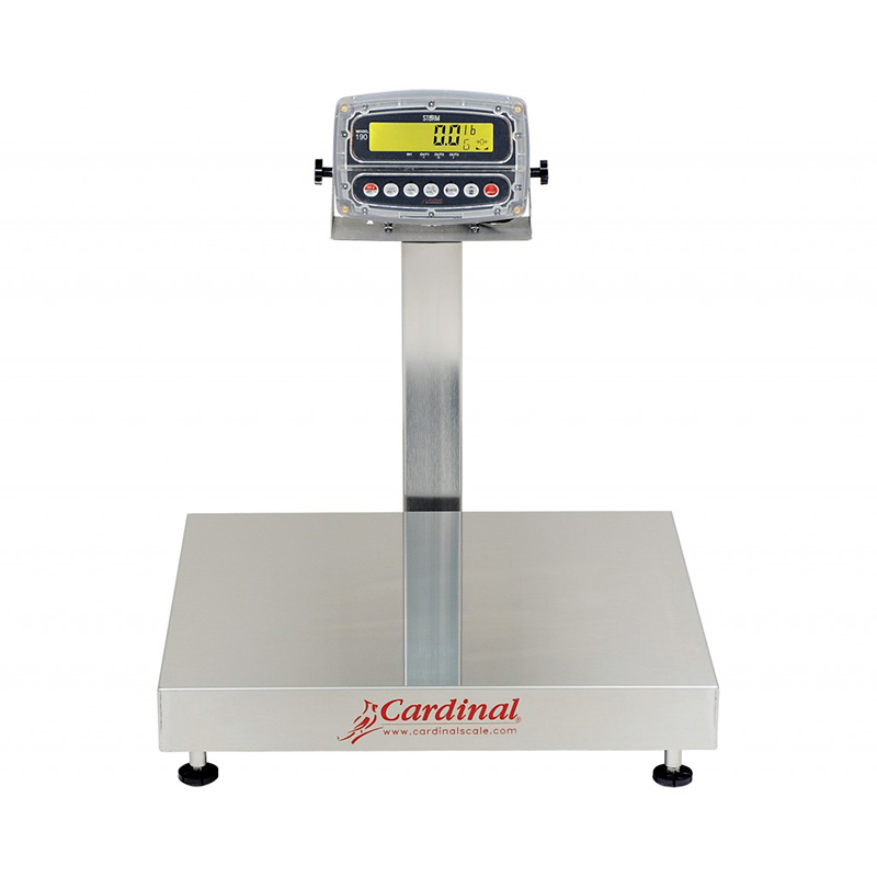 Detecto Digital Bench Style Scale with 190 Indicator - 300 lb. Capacity